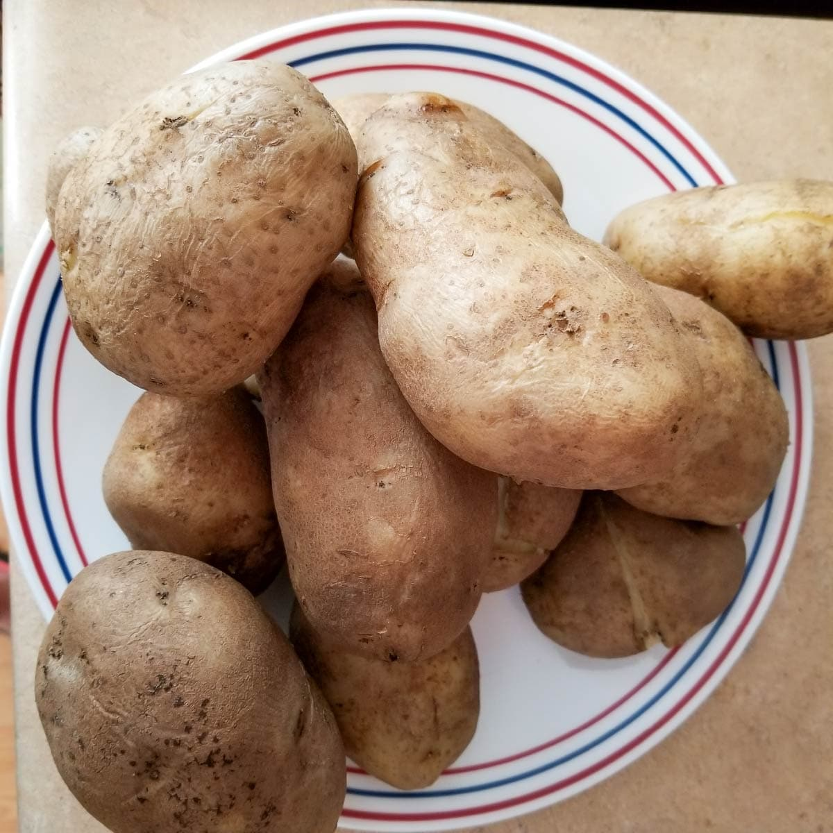 Whole russet potatoes on a plate after being cooked with the skins on.
