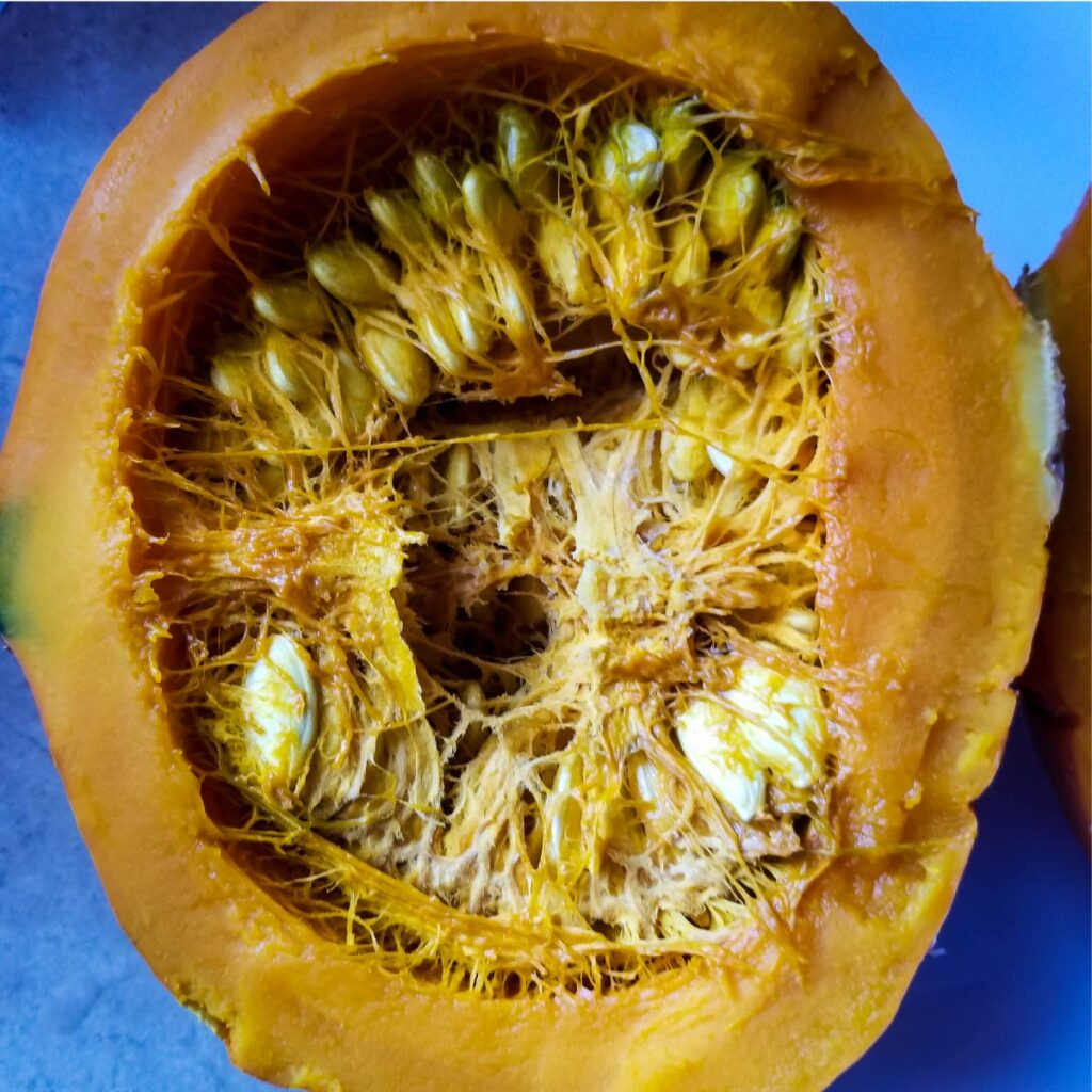 Red kuri squash cut open to show how many seeds are in the middle.