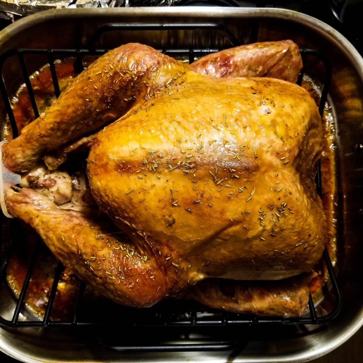 Turkey in a roasting pan that just came out of oven